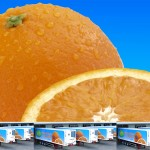 CLIVE BOZZARD-HILL PHOTOGRAPHY, LONDON-jaffa-orange-logistics